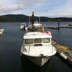 Blue Fin Adventures boat