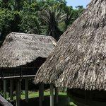 Raised Cabanas