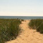 Walkway through sand to beach