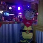 Andy the Armadillo!!