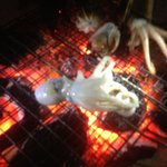 Grilling some small squid