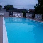 Sparkling clean pool! So nice.