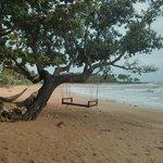 Playa Pra Ae Ç(Longbeach)