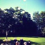 Grandchildren releasing balloons in gardens