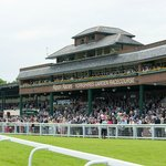 Ripon Racecourse