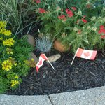 Sweet garden decorated for Canada Day