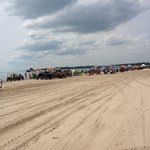 Lake Erie beachfront