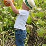 Ages 2-92 enjoy picking out pumpkins of all shapes and sizes