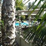 Vista dal nostro balcone sulla piscina