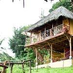 wunderschönes Haus