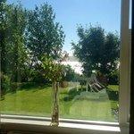 Vista dalla nostra camera matrimoniale su giardino e fiordo