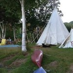 Our happy and exhausted dogs relaxing outside the Tipi