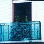 """Las """"flores"""" del vecino"""