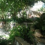 crazy awsome garden!!