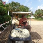 Golf Cart Day - another MUST DO!