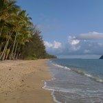 Beautiful Palm Cove