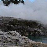 Pohutu Geyser - Te Puia (Rotorua)