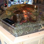Salt Water Touch Tank Aquarium!