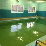"""Green"" Pool  Yecch"