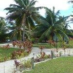 central garden area