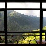View over rice paddies