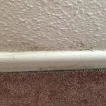 Mould on wall in bedroom