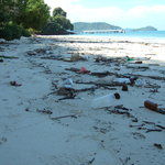 Unacceptable debris on the private beach: most Hotels would clear this away first thing.