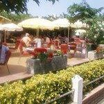 Bar/terraza