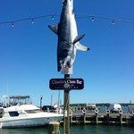 Sharknado outside Claudio's