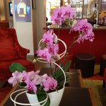 Fresh orchids in lobby and all around