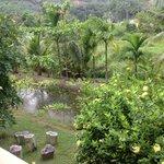 lieu paisible vu de mon bungalow