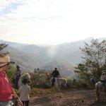 Rainforest Trek 2013