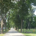Droga dojazdowa do zamku