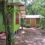 Cabinas in the jungle