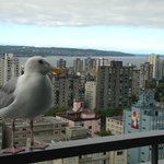 Bird's eye view of Vancouver from the 23rd floor