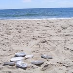 Nos pieds ont foulé Surfside Beach!