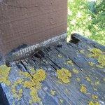 Rotten balcony