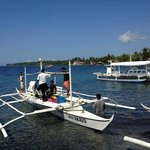 the boats for hire going to the Apo Islands