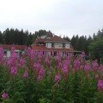 Foto di Gustavus Inn at Glacier Bay