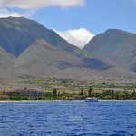 A view of Maui from the boat