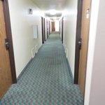 A bit of a smell in the hallways, recently declared a non-smoking hotel