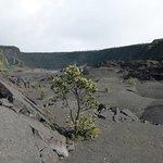 Wanderung durch den Kilauea Krater