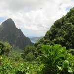 View of Petit Piton from Lamontagne Trail