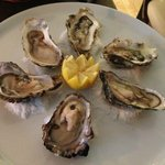 The oysters, perfectly perched on salt hills