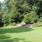 Plenty of areas for picnics