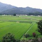 宿の周りの田園風景