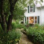 Meandering Path in the Garden