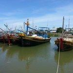 Sqid fishing Phan Thiet