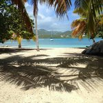 Well Bay Beach at Surfsong Villa Resort, BVI