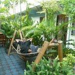 CM -BLUE-HOUSE (jardin et coin détente )